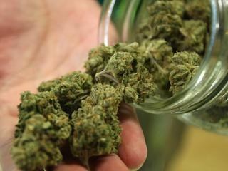 снимка, Употребата на марихуана оказва негативно влияние върху интелекта
