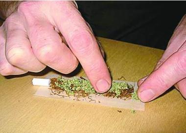 снимка, Канабис: научни доказателства срещу легализирането от Наоми Колман  и Розалинд Раян