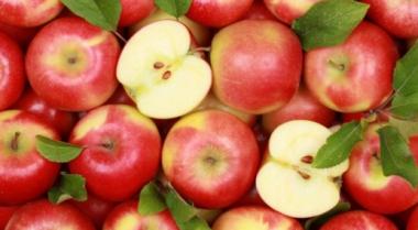 снимка, 7 причини да ядем ябълки всеки ден