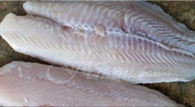 снимка, Не купувайте тази риба никога! Продава се навсякъде, но трябва да бъде забранена!