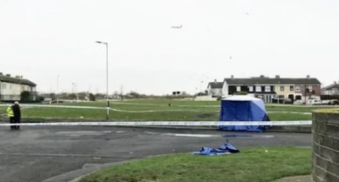 снимка, Какво се случва в Дъблин? Намериха нови останки от разчленен труп, подозират…