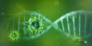 снимка, Нивото на антитела към COVID-19 намалява по-бързо при мъжете