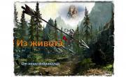 снимка, СТРЕЛАТА С МАРТЕНИЦАТА - ЛЕГЕНДА ОТ ЕДНО БЪЛГАРСКО СЕЛО В ПИРИН