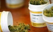"""снимка, """"Légaliser le cannabis ne mettra pas fin aux trafics"""""""