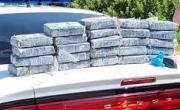 снимка, Намериха кокаин за $1,2 млн., докато търсят гнезда на костенурки на плаж във Флорида