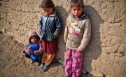снимка, Осем български роми арестувани в Гърция за експлоатация на деца