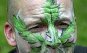 снимка, Истинското лице на марихуаната
