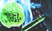 снимка, Доза марихуана влияе на организма цял месец .