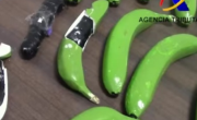снимка, Хванаха 17 кг кокаин в гумени банани