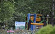 снимка, Изсъхнал клон се стовари върху детска количка в кърджалийски парк, майката изпадна в шок, а бебето...