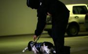 снимка, Митниците отчитат ръст на заловените наркотици тази година