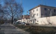 снимка, Затворник от Пловдив се напуши с бонзай, осъмна в стационара