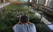 снимка, Социални и поведенчески проблеми свързани с  дрога