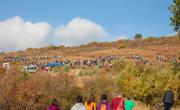 снимка, Хиляди старозагорци се включиха в създаването на нова дъбова гора