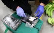 снимка, Колумбия заловила над 430 тона кокаин през 2019 г.