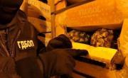 снимка, Съдия: 11 кг наркотици не е нещо, което всеки ден се среща